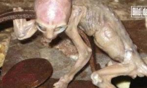 Những đứa trẻ ngoài hành tinh phát hiện trên Trái Đất