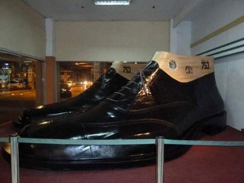 bao-tang-giay-khong-lo-995595-1372661884