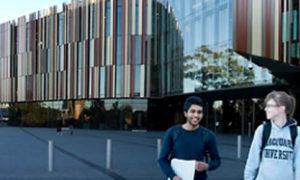 Cơ hội việc làm tại Australia sau khi tốt nghiệp