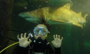 Nữ giảng viên đi 80 nước, lặn cùng cá mập