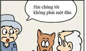 Lão già ngốc nghếch: Chó ăn xin