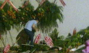 Ảnh xôn xao Facebook 13/1: Người Sài Gòn 'hôi hoa'