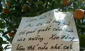 Nhà trường 'cấm hái quất' khiến học sinh phì cười