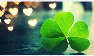 Bí mật của sự may mắn