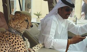 Những thú chơi siêu sang ở Dubai khiến bạn tròn mắt