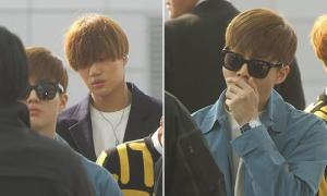 EXO, Apink, SHINee mặt ngái ngủ cực yêu trên đường sang Việt Nam