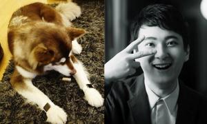 Con trai đại gia giàu nhất Trung Quốc mua Apple Watch cho cún cưng