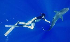Sao US-UK 10/6: Zac Efron khoe tài... đuổi bắt cá mập