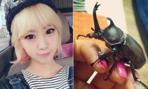 Idol Kpop và những vật nuôi hàng độc