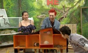 Erik 'khóc thét' khi tham gia thử thách trên truyền hình trực tiếp