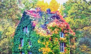 Những căn nhà đẹp như được xây nên từ cổ tích