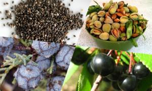 Bạn có biết những loại rau, quả, hạt này?