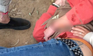 Bị báo đốm tấn công khi đang chụp ảnh 'tự sướng'