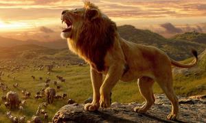 'The Lion King' phá kỷ lục của 'Harry Potter'