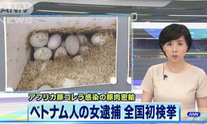 Nữ sinh Việt bị bắt vì mang vịt lộn, nem chua vào Nhật Bản