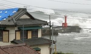 Thêm 2 người chết trong vụ chìm tàu Panama do bão Hagibis