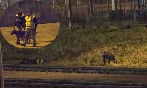 Trò 'mèo vờn chuột' trong hành trình liều lĩnh của người di cư vào Anh