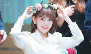 Kỹ năng nhảy của Sakura sau một năm làm idol Kpop