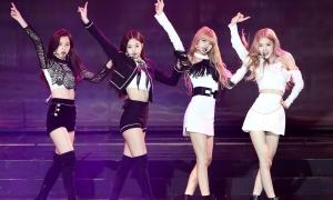Black Pink hoãn comeback, fan ca bài 'đợi chờ là hạnh phúc'