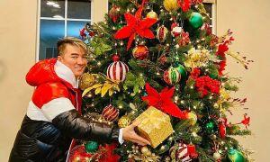 Biệt thự ở Mỹ của Đàm Vĩnh Hưng ngập tràn sắc Noel