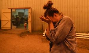 Cháy rừng ở Australia: Như cuộc trốn chạy ngày tận thế