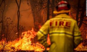 Australia bắt 24 người gây hỏa hoạn