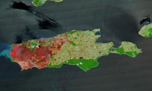 1/3 đảo Kangaroo bị thiêu rụi vì cháy rừng