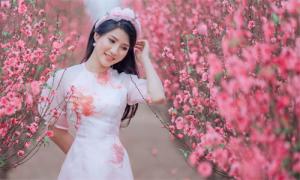 Gái xinh Hà thành check in vườn đào Nhật Tân