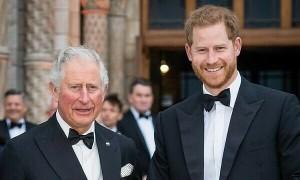 Thái tử Charles hỗ trợ tài chính cho Harry trong một năm