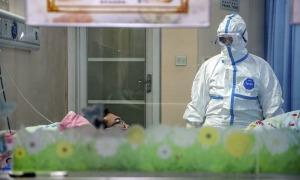 Số người chết vì virus corona tăng lên 1.115