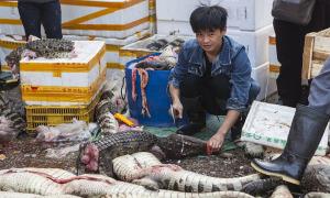 Trung Quốc cấm buôn bán động vật hoang dã