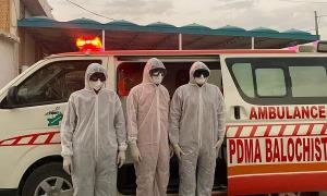 Hàng loạt quốc gia xác nhận có ca nhiễm nCoV đầu tiên