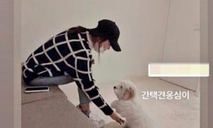 Song Hye Kyo bị chỉ trích vì đeo khẩu trang sai cách