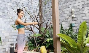 Hoa hậu Hoài Sa 'ra vườn vào bếp' trong ngày ở nhà chống dịch