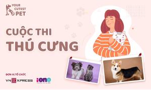 Bắt đầu mở bình chọn Your Cutest Pet