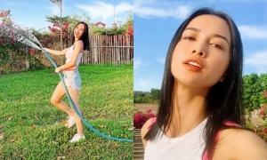 Vũ Ngọc Anh chăm vườn, tắm nắng khi tránh dịch