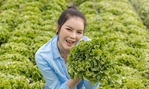 Lý Nhã Kỳ bán nông sản tự trồng