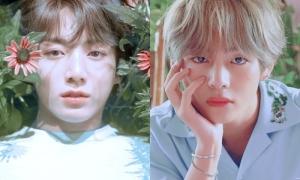 Jung Kook 'mắt nai' và V 'mắt cáo' - ai thu hút hơn?