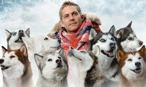 Ở nhà trốn dịch xem gì: Khóc hết nước mắt với 4 phim về cún cưng