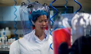 Nghiên cứu cá nhân về nguồn gốc virus của nữ 'người dơi' Trung Quốc