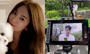 Song Hye Kyo bị réo 'tránh xa Hyun Bin' sau khi rộ tin hẹn hò