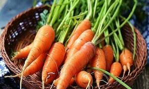 Cà rốt ban đầu có màu gì?
