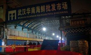 Trung Quốc nói Covid-19 không bắt nguồn từ chợ hải sản Vũ Hán