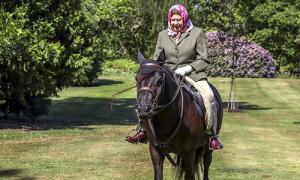 Nữ hoàng Anh 94 tuổi vẫn cưỡi ngựa đi dạo