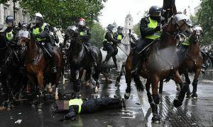 Nữ cảnh sát ngã văng khỏi ngựa giữa biểu tình