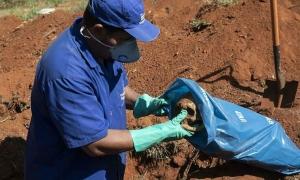 Brazil quật mộ cũ để lấy chỗ chôn bệnh nhân Covid-19