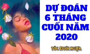 Video trải bài Tarot: Cuộc sống của bạn trong 6 tháng cuối 2020 sẽ ra sao?