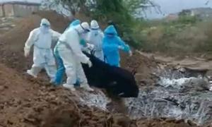 Thi thể nạn nhân Covid-19 bị vứt xuống hố chôn tập thể