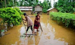 Lũ tàn phá Ấn Độ và Nepal, ít nhất 189 người chết