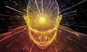 Loài vật nào là biểu tượng của trí tuệ?